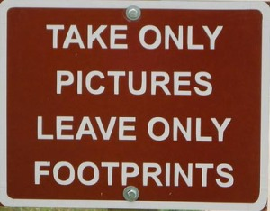 Take Only Pictures